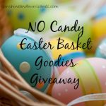 Enter to win sunshineandhurricanes.com Non-Candy Easter Basket Goodies Giveaway