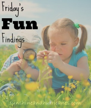 Friday's Fun Findings - Our Favorite Things This Week From Articles, to Blog Posts, Books, Products, You Name It. sunshineandhurricanes.com