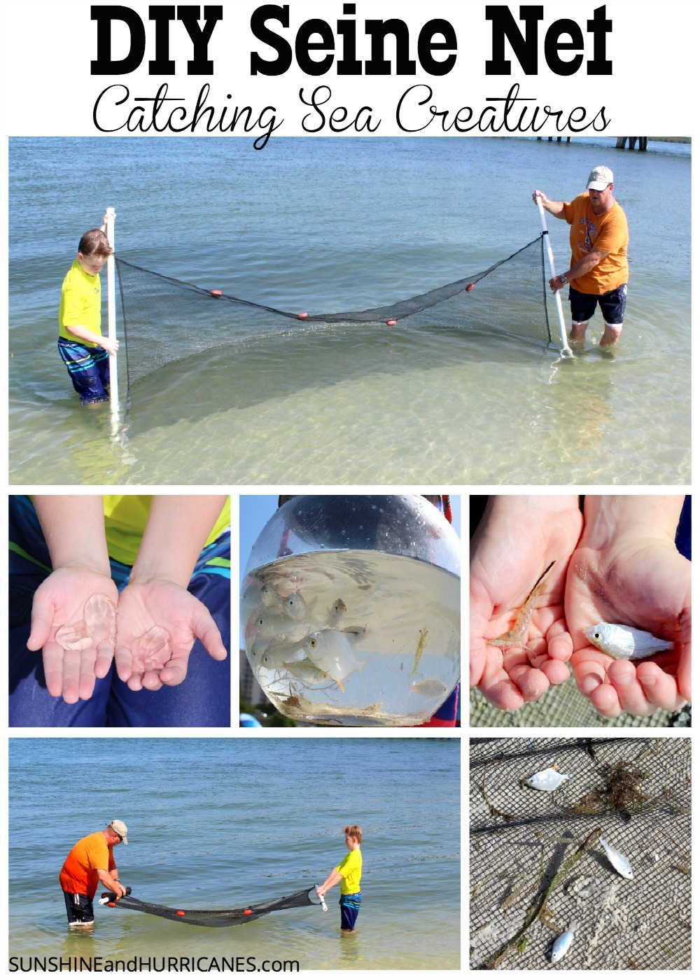 Looking for a fun and affordable way to fill a trip to the beach with a little more adventure, exploration and even education? You can pull together this quick and easy DIY Seine Net with little effort and then head out and see what sea creatures you can find at your favorite beach. SIY Seine Net, Catching Sea Creatures. SunshineandHurricanes.com