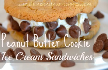 peanut butter cookie ice cream sandwich