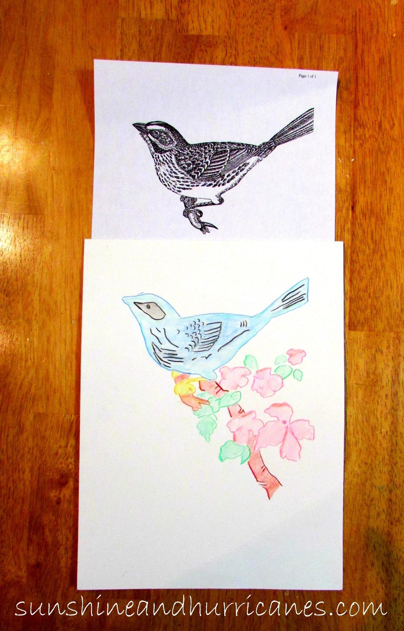Watercolor DIY