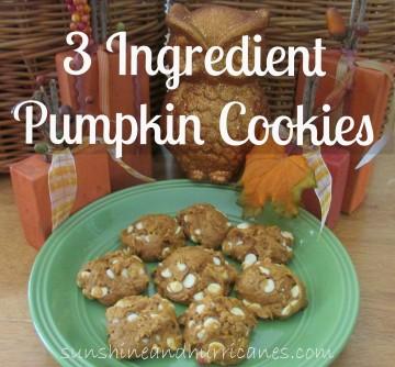 3 Ingredient Pumpkin Cookies
