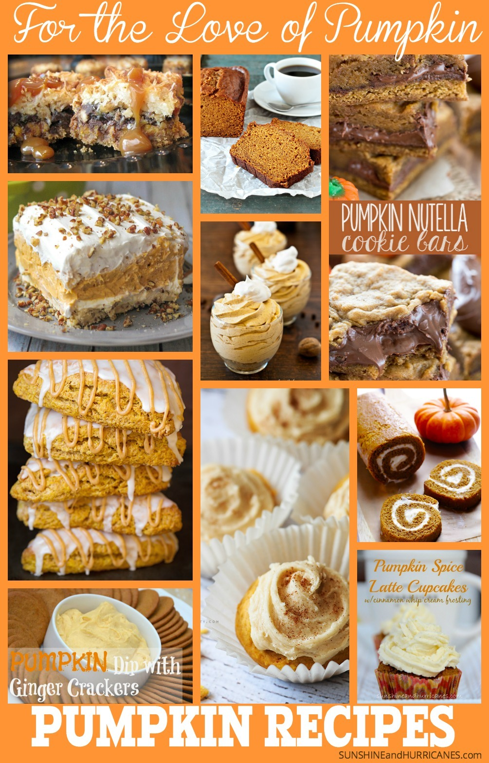 Do you love the first time their is a hint of a chill in the air, because you know it means pumpkin season has begun? For the true pumpkin lovers, we've found the best of the very best pumpkin recipes and collected them in one easy place for you to find this fall (or anytime of year). Enjoy the comfort of your favorite pumpkin treats while you curl up and watch the season change. The Pumpkin Lovers Pumpin Recipes Round-Up. SunshineandHurricanes.com