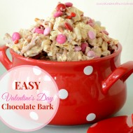 Looking for a sweet treat for someone special this Valentine's Day? This Easy Valentine's Day Chocolate Bark is great for a school Valentine's Day party or packaged with cello wrap and a cute ribbon as little gifts. sunshineandhurricanes.com.