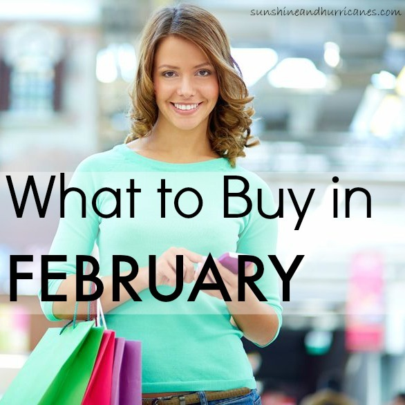 Want to know when you can find the best deals on just about anything during the year? We can tell you when to shop for lowest prices on all your needs and wants. Here's What to Buy in February. sunshineandhurricanes.com