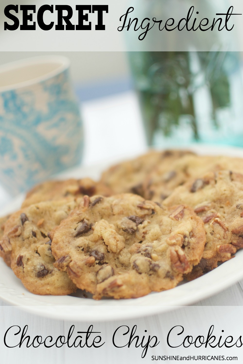 You will NOT believe what is in these cookies OR how amazing they taste! You'll have your guests dying to know your secret in this chocolate chip cookie recipe as they steal just one more off the plate. Secret Ingredient Chocolate Chip Cookies. SunshineandHurricanes.com