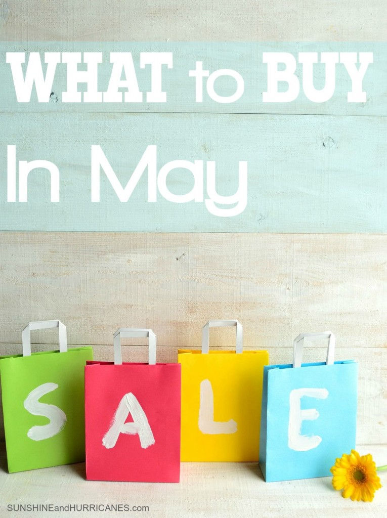 Want to know where you'll save the most money and what products and services will be on their best deals of the year this month? We'll save you money and help you know when is the best time to buy. Click to find out What to Buy in May. SunshineandHurricanes.com