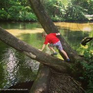 Travel Is A Family Adventure and Giveaway