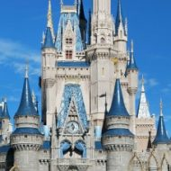 10 Ways To Survive Disney In The Summer