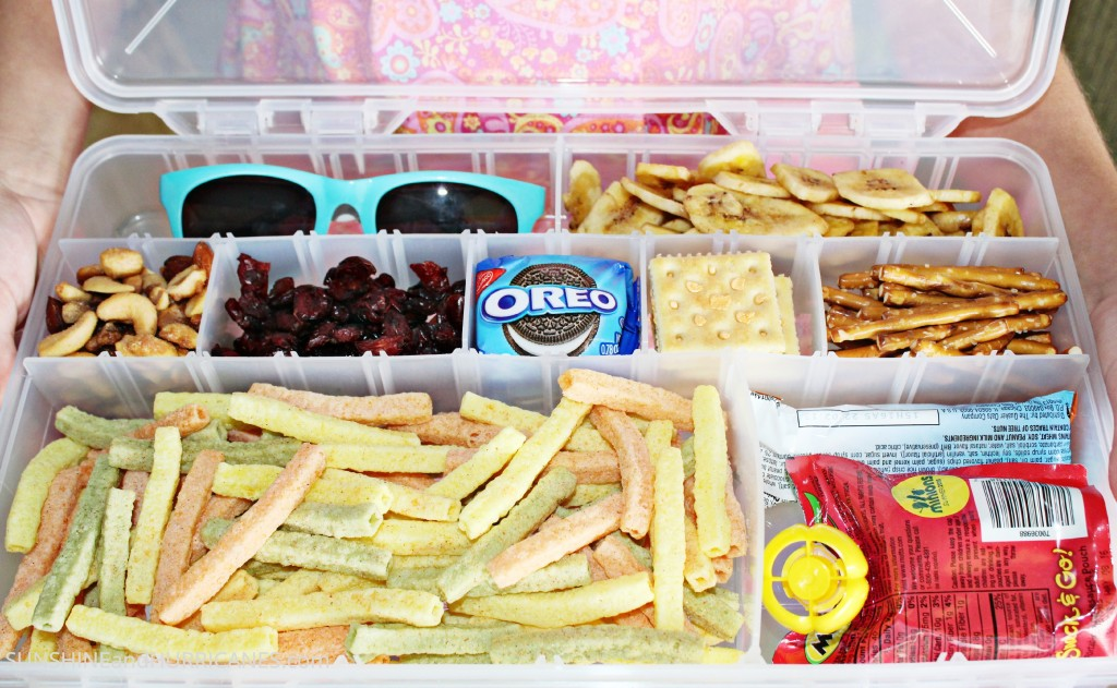 Best Junk Food For Road Trips