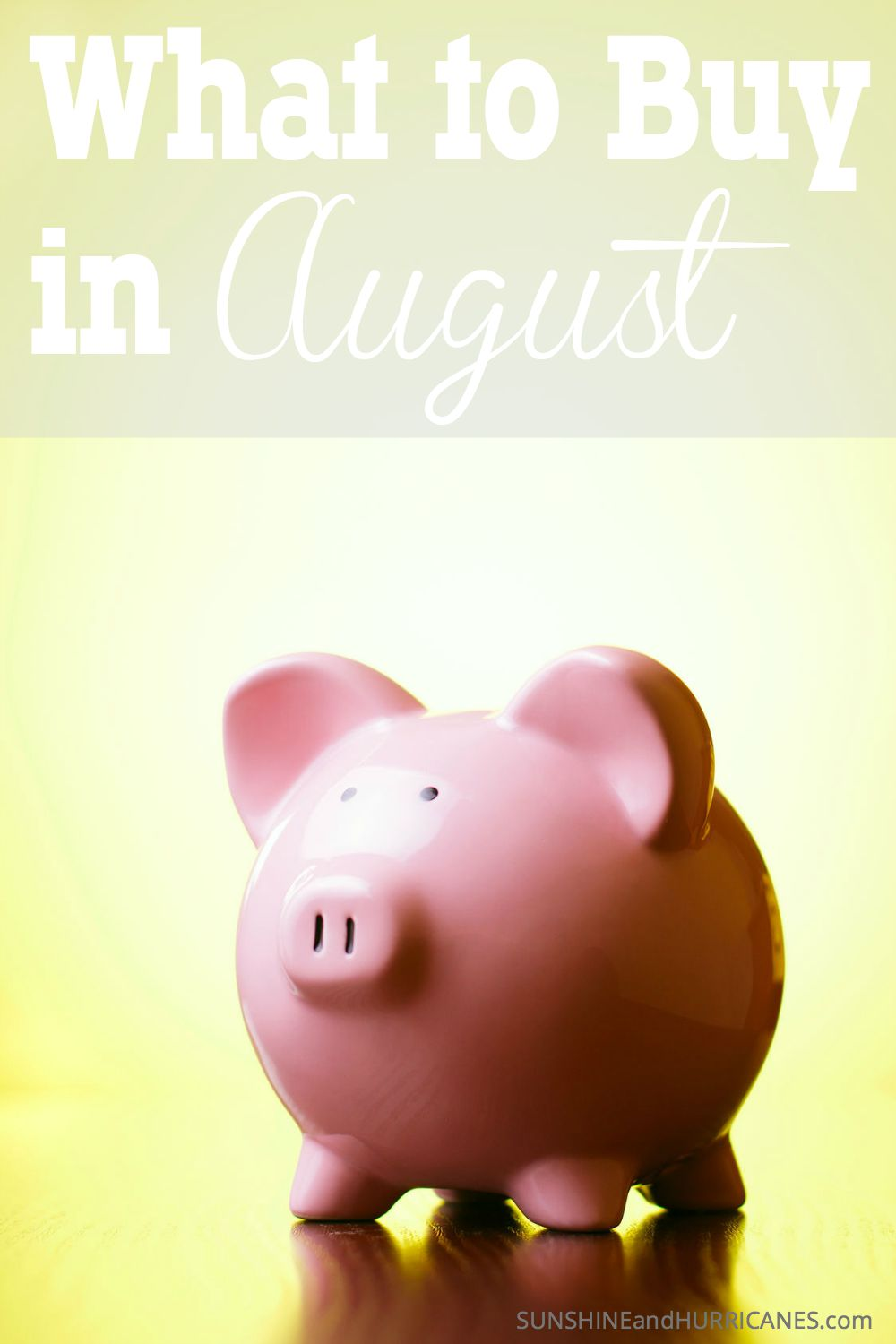 Want to know what all the best deals are in August? Almost all the things we buy for our households will have better prices certain months of every year? Knowing when to buy what can really help keep your family budget on track. What to Buy in August. SunshineandHurricanes.com