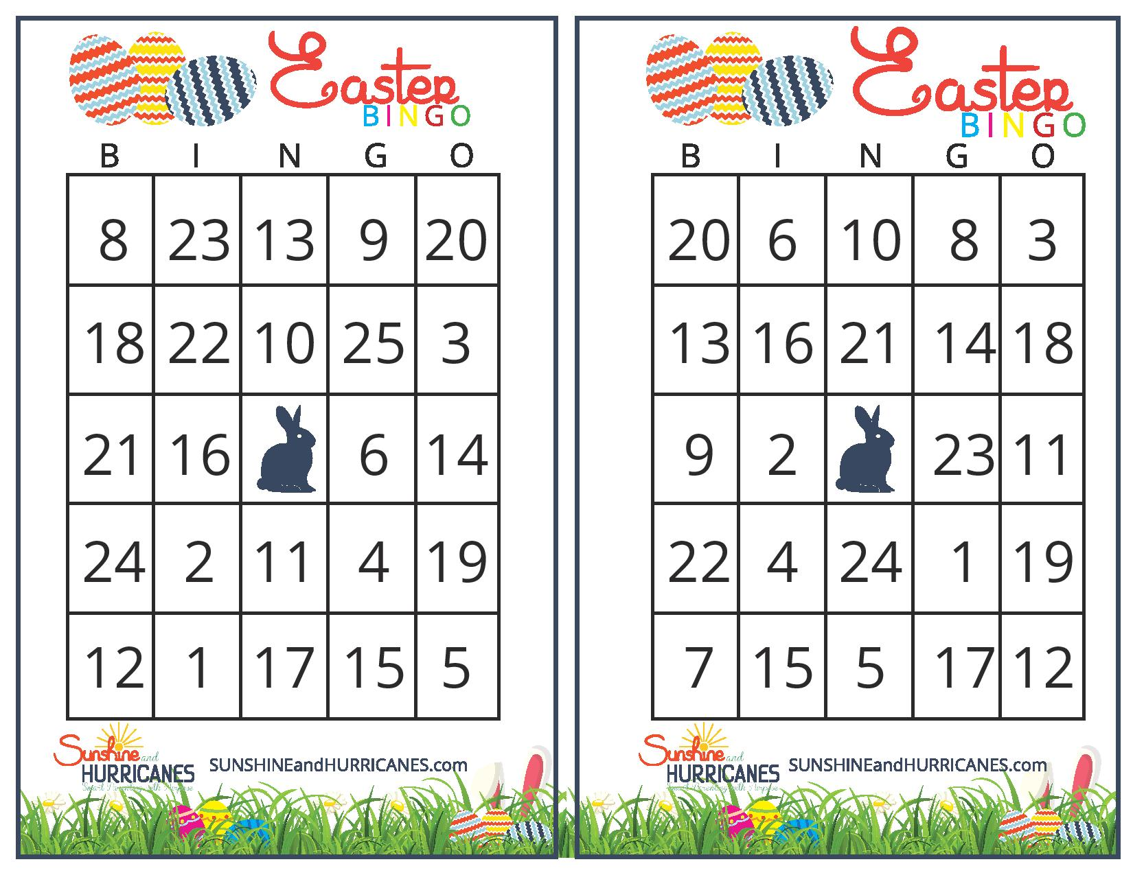 A great activity for a school Easter party or even for a family gathering with lots of kiddos! Easter Bingo - Printable Easter Games. SunshineandHurricanes.com