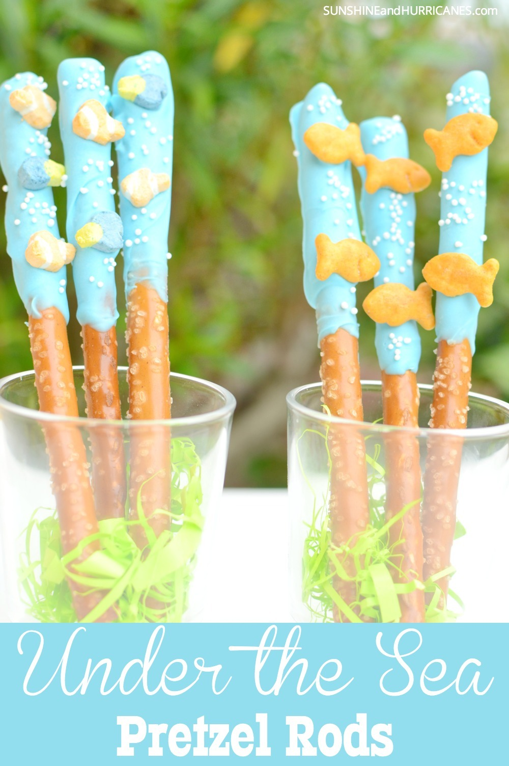Looking for some fun snacks for a birthday party or pool party? These chocolate dipped pretzel rods are adorable and so easy to make. They'll be the hit of any celebration including a Finding Dory Birthday, Finding Nemo Birthday or Even and Under the Sea themed get together. Finding Dory Snack from SunshineandHurricanes.com