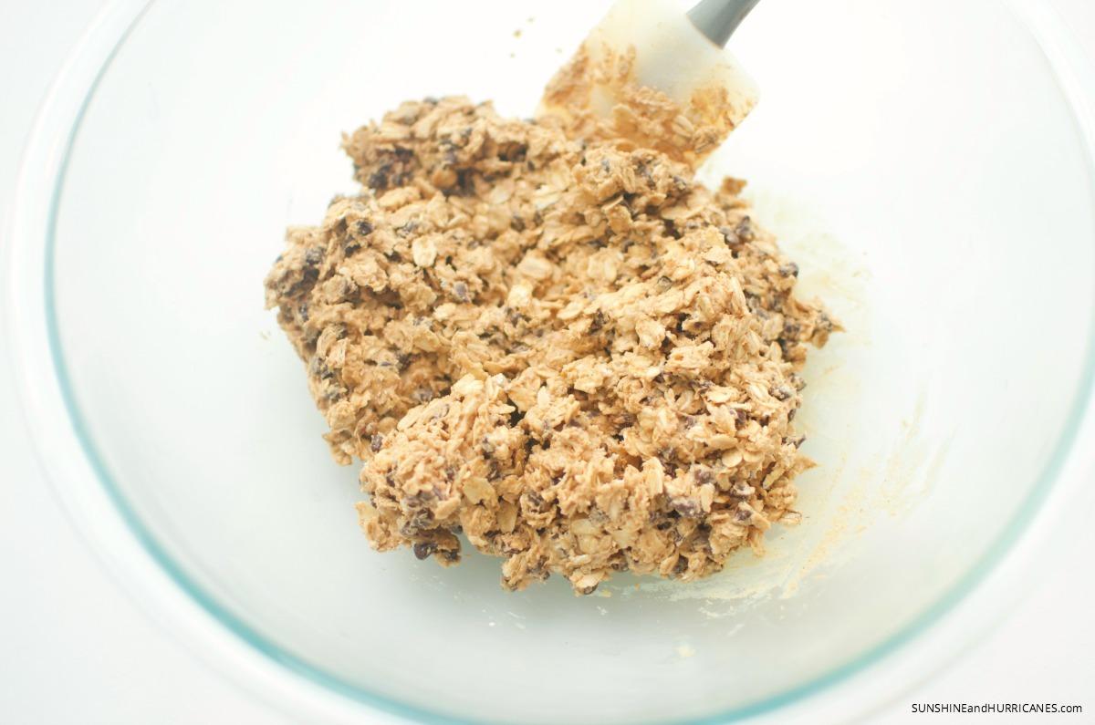 No Bake Peanut Butter Protein Balls. SunshineandHurricanes.com