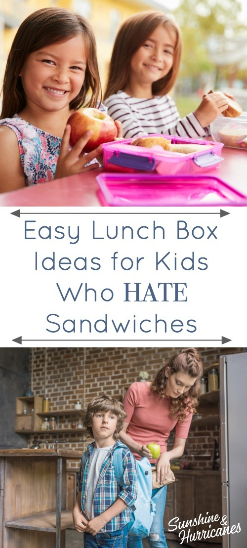 Easy Lunch Box Ideas for Kids Who Hate Sandwiches